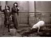 1983-Paar-mit-schwein in Berlin